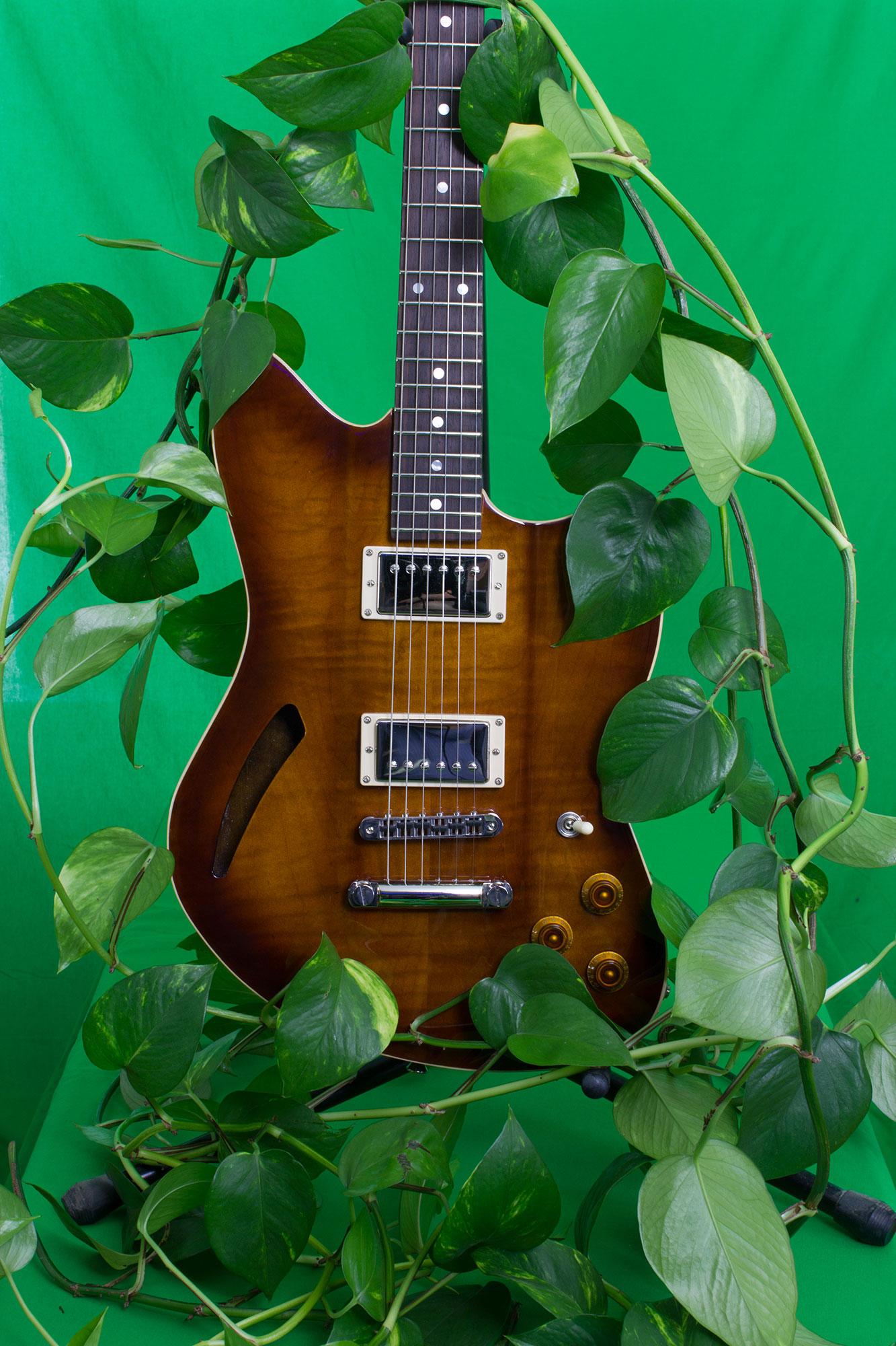 Huffman & Comapany Custom Guitars